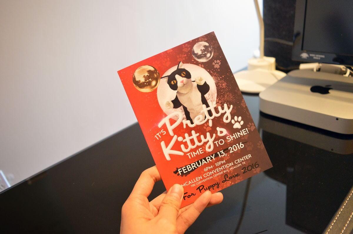 kitty-soundcard-1