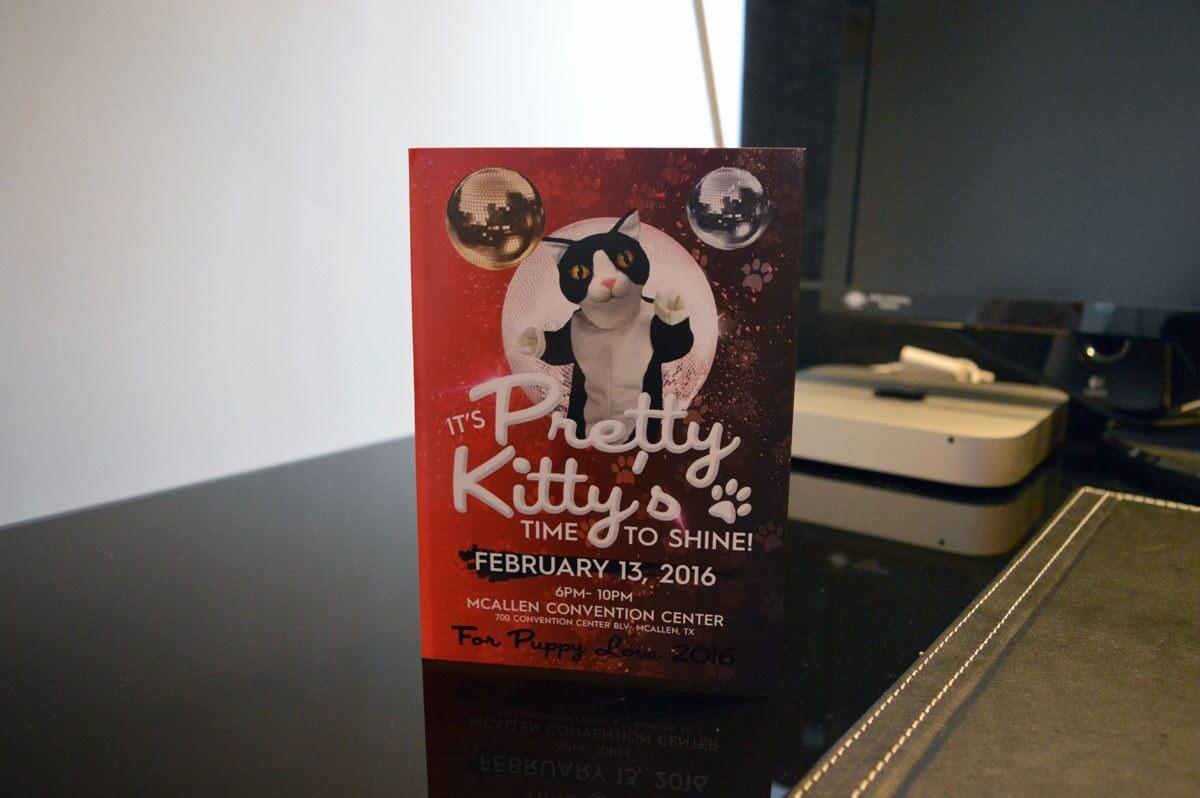 kitty-soundcard-4