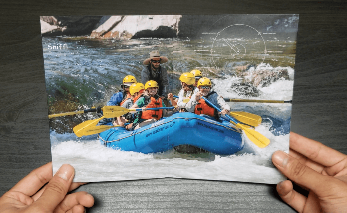 Mackay Wilderness River Trips